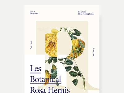 001 - Poster Series series design poster