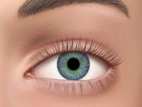 Realistic Eye Illustration for Medical App
