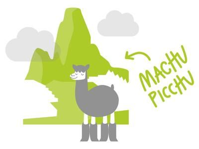 Machu Picchu inca trail mountain alpaca peru machu picchu