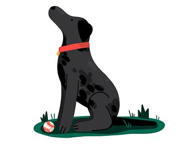 Black Lab icon illustration procreate editorial digital dog