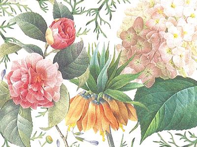 Floral Arrangement floral horitculture vintage flowers arrangement pattern
