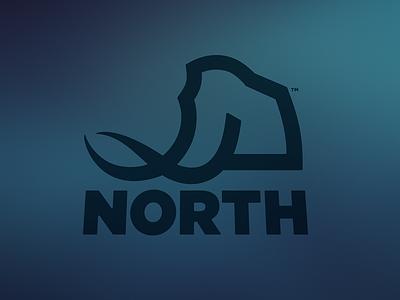 North App Co. ice age blue mammoth design identity branding logo