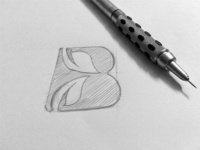 Bayleaf logo design sketch