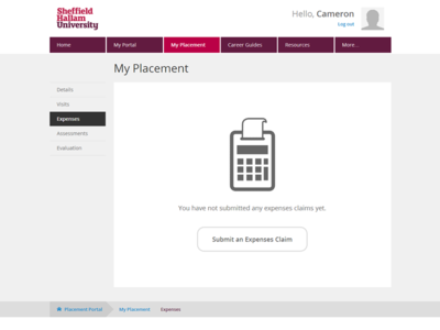 Placement Portal - Expenses