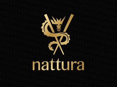 Nattura jerron logo chopsticks dragon