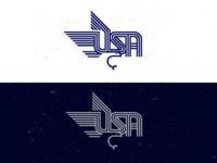 USA_Eagle_drib 3