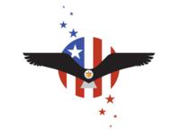 Eagle Flight_drib