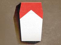 Cigarette Coffin_ Drib