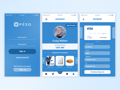Payments App visa scan payments pay money merchants ecommerce credit blue