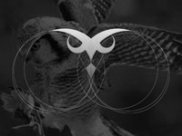 Owleyes Consulting