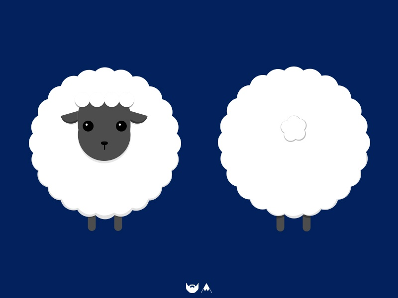 Sheep for birth back front card photoshop design sheep