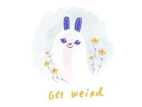 get weird bun bun