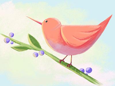 Birdy fresh illustration nature plant color warm orange ps animal character cute bird