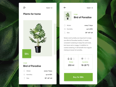 Plants e-commerce sunshine table suggestion side menu stats price list cart plant shopping card card total water humidity mobile store e-commerce description card item interface infographics plants monstro green