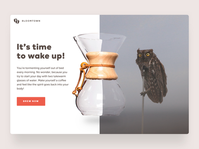 Good Morning design ui owl quick challenge landing page coffee