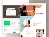 Clean webpage Online Hospital