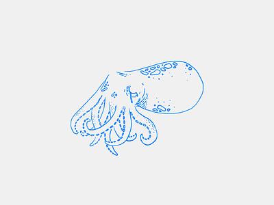 Sad 'Lil Squid Illustration sad squid ocean sea outline ink print drawing graphic illustration