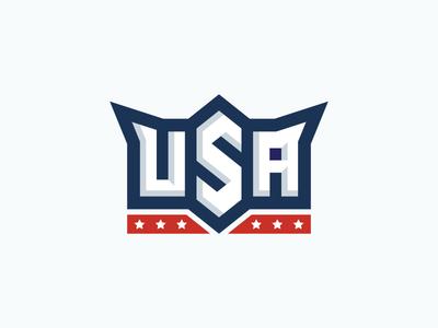 U-S-A bevel type stars flag america usa