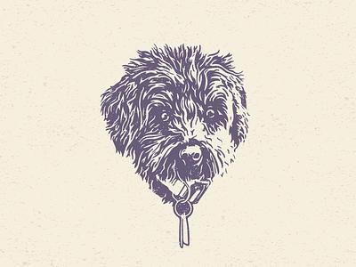 Lucy Portrait dog icon dog illustration design drawing puppy cockapoo dog head portrait dog