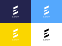 Evercar colors