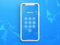 Cesium pin code
