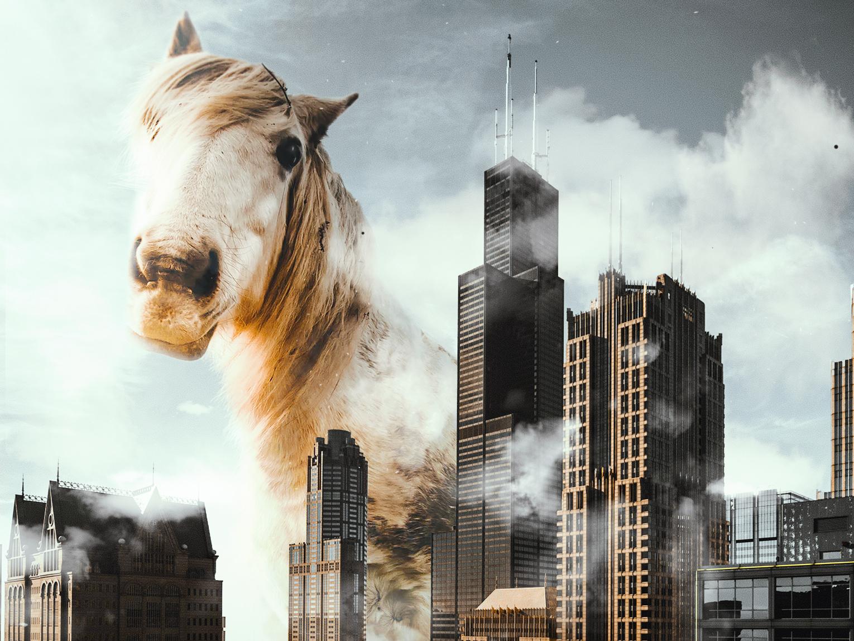 The Horse surreal-art digital-art design photocomposition adobe photoshop visual arts graphic design surreal art photoshop digital art photomanipulation