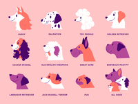 Dog Icons illustrator pink derpy dogs dogs dog icons illustration