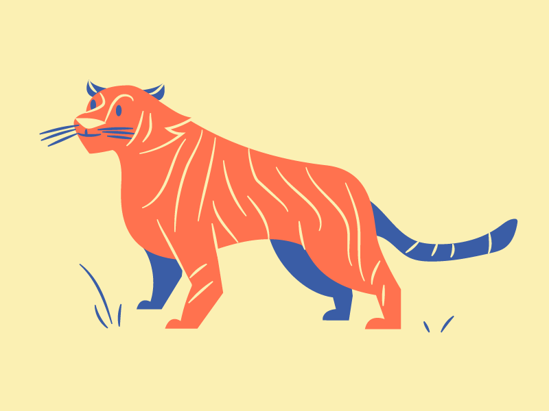 Rar yellow tiger illustration