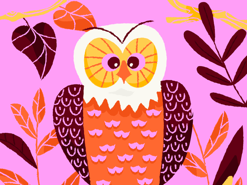 Mr. Owl trees nature birds kind of cross eyed pink owl illustration