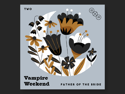 2. Vampire Weekend 10x19 music record albums illustration