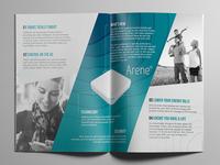 Arene, a hub concept