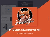 Phoenix Startup UI Kit on Product Hunt