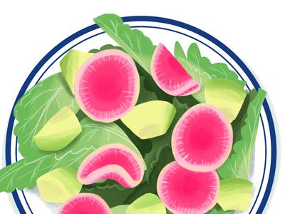 Watermelon Radish Salad food illustration illustration