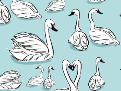 Swan Pattern surface design illustration pattern textile swan