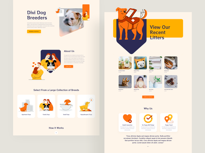 Dog Breeder - Sneak Peek typography wordpress wordpress design wordpress theme template website ux ui elegantthemes ishtiaqkhanparag divi dog walking dog walker dog logo dogs dog illustration dog breeder dog breeds doggy dog