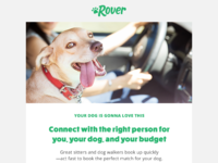 Rover email option 01