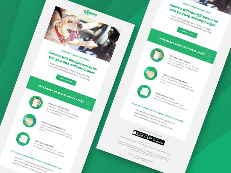 Email Design interface dailyui visual ui html visual design dog design email