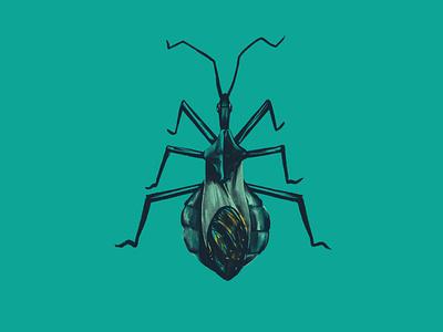 Wheel Bug (Arilus cristatus) women who daw digital illustration ipadpro bug bug catcher drawing insects bugs illustration