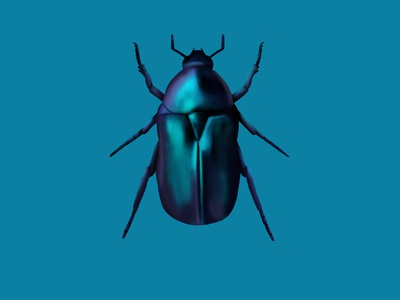 June bug bug collector color study insect luminescent bug cute illustration