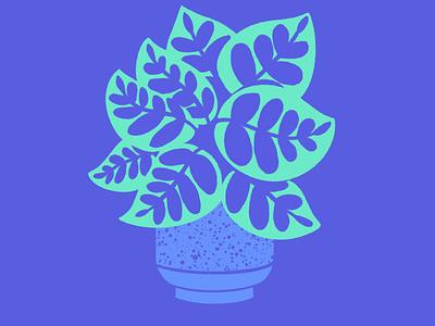 House Plant house plant plant illustration leaf pattern colorful peacock plants design drawing texture adorable color exploration ipad pro ipadpro cute digital illustration illustration
