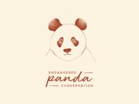 Day 3 - Panda