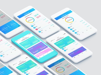 Fancy Accounting App minimal design apple iphone mobile design ux ui accounting