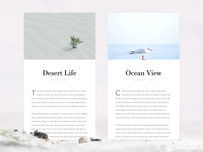 articles bird plant ocean desert clean simple minimal ui blog article