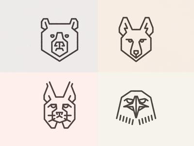 Bear, Coyote, Bobcat, Hawk