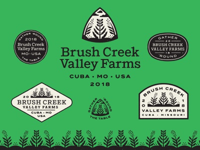 Brush Creek Valley Farms farmer cuba pork beef chicken pasture organic missouri valley creek brush field pattern badge logotype seal plant farm logo branding