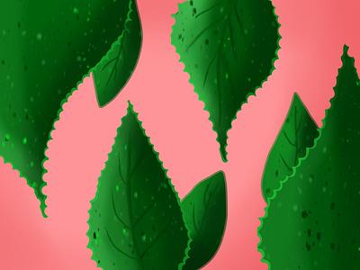 30-minute Leaf Illustration procreate digitalart vector illustration