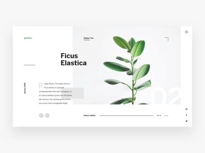 Plants Website modern ux ui landing page white green nature minimal website dashboard