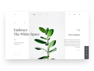 .anti-dark website exploration ux layout rubber plant simple dashboard minimal landing page website clean android ui ios