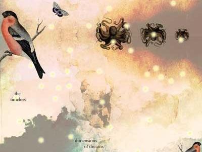 Dreamscape Detail illustration