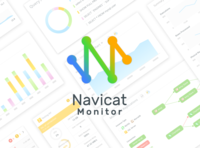 Web App Design Process - Navicat Monitor